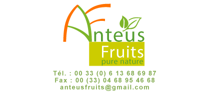 Logo Anteus Fruits